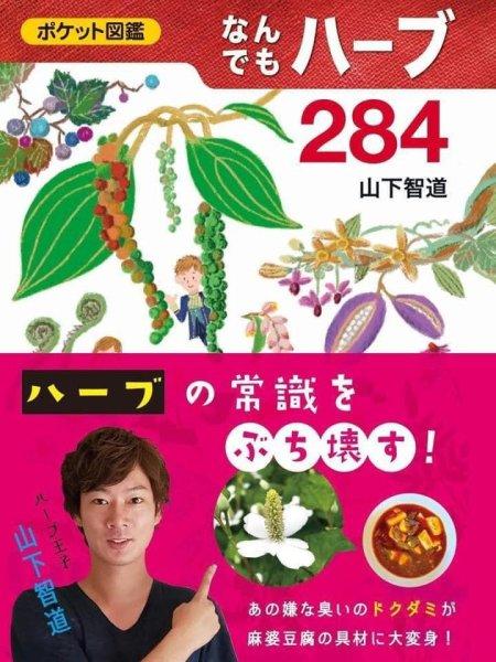 画像1: 『なんでもハーブ284』(ポケット図鑑) (1)